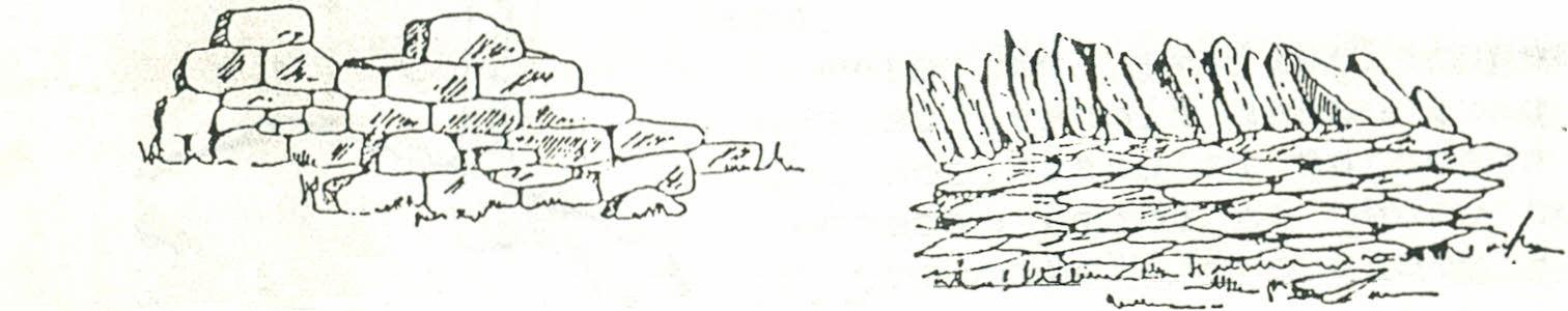 Pasta de papel - Imagen 08